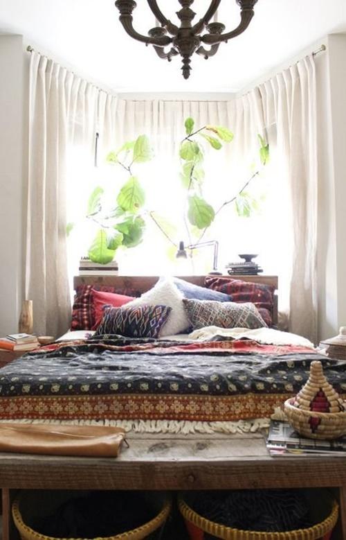 plantas en la habitacion
